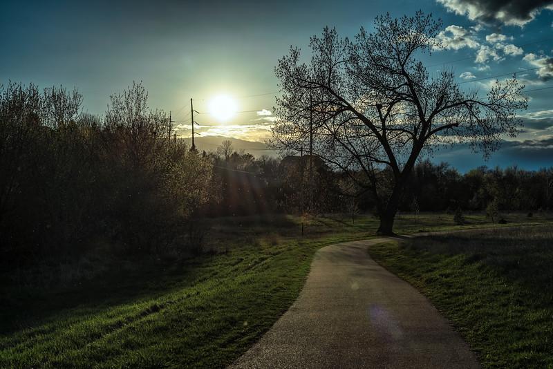 Walking Toward the Sunset Home