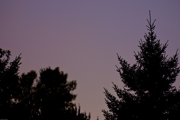Day 243: Lightning Flash. I was excited to take some pictures of the harvest moon tonight, but the weather did not cooperate. It was cloudy and rainy all evening, with some thunder and lightning.   It was still a beautiful evening.