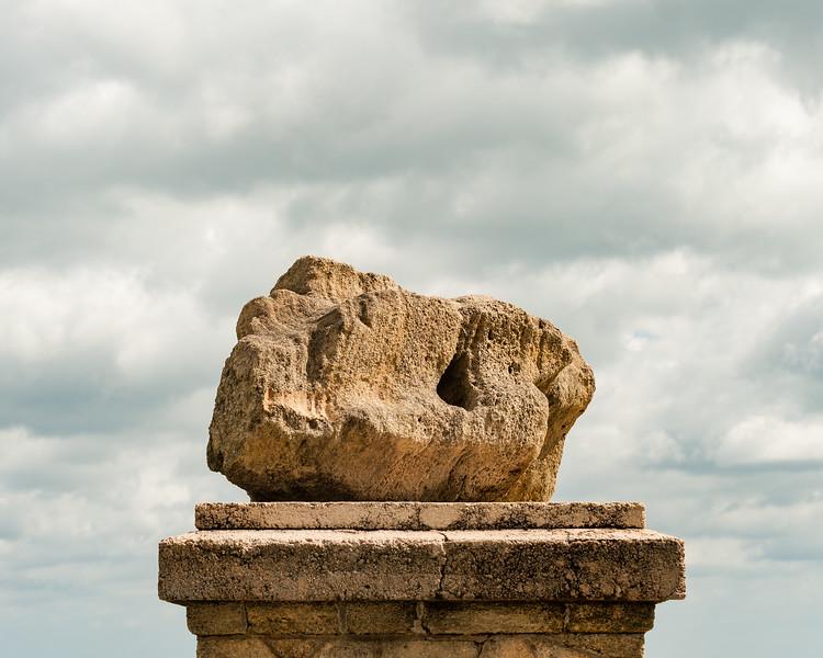 Coquina Rock portrait