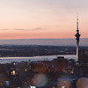 Auckland City Pano