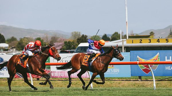 The Races - Livamol Classic, Hasting Racecourse