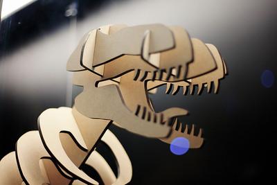 Informal Shot- T-Rex 3D