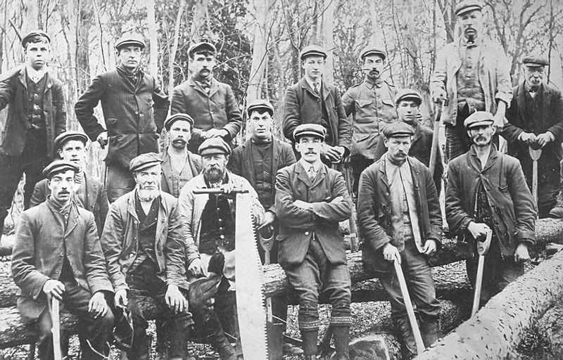 <center><font size=3><u> - Woodcutters - </u></font> (BS0331)  Group of men with owner/foreman? May be woodcutters or gardeners </center>