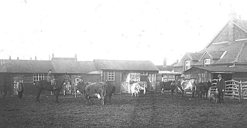 <center><font size=3><u> - Castle Farm (Mr West's) -  </u></font> (BS0504)  The area behind the farmhouse on which Horseshoe Lane is now built.  The old British School and the roofs of Littleworth are visible in the background.  It is thought Mr Bertie West is the person to the extreme left of the photo.  Peter Clarke recalls collecting fresh milk in a jug from the farmhouse door as a child in the 1940s<center>