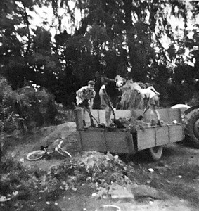 The driveway would get very muddy so John borrowed his bosses tractor trailer and brought in some hard core bricks and mortar. here Ian, Martin Stokes and Neil Bisco unload the  cargo.