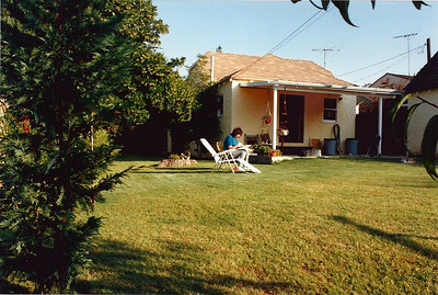 Notice the base of the big tree still prominent in the lawn. This was eaten away by termites within a couple of years.
