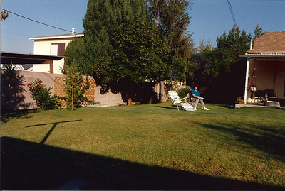 With the tree and bushes gone we were able to extend the lawn
