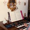 197x-xx-xx Sally at Organ, Gallops House