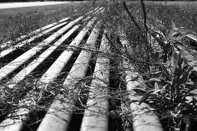The railroad ending in Sasser Ga