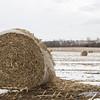RACHEL LEATHE/ THE COURIER<br /> <br /> 021616 Landscape photos
