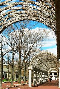 Vine covered arbors, Christopher Columbus Park.