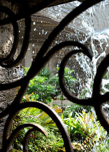 In the Cascades Conservatory.