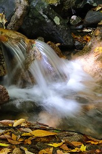 One of many cascades along Brook Trail.