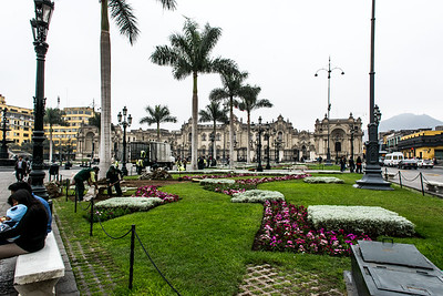 Planting flowers in Plaza Mayor, Lima Peru.