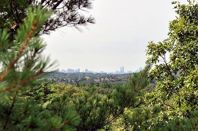 Boston skyline from Ridge Trail - Breakheart Reservation, Saugus MA.
