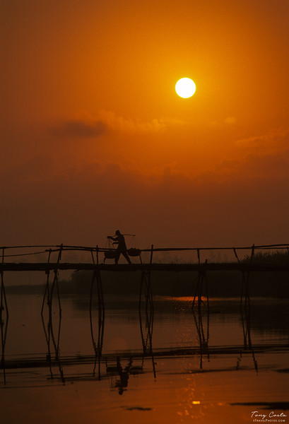 Bamboo Bridge at sunrise