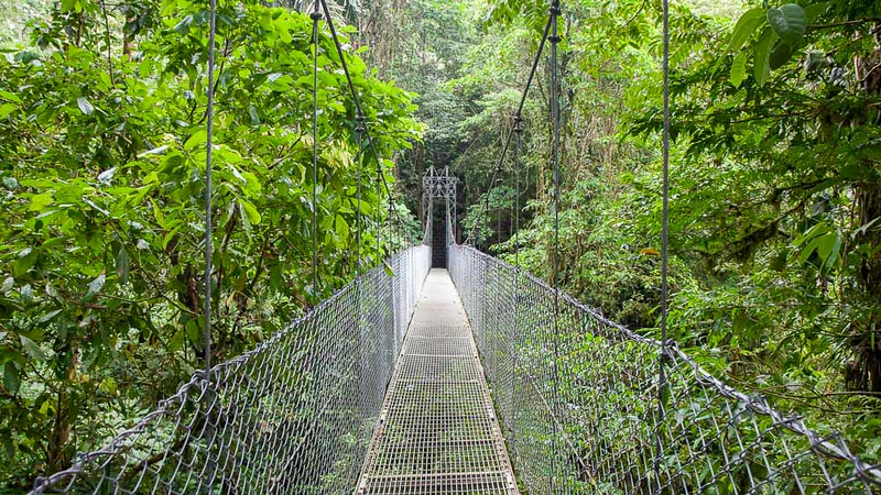 Canopy bridge, Costa Rica