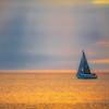 Coogee Sails