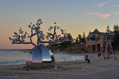 Cottesloe 2021 - Boab with Tea house
