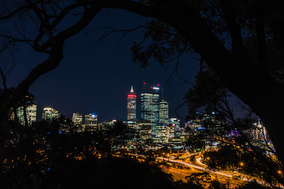 A peek at Perth City Center from Kings Park.