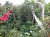 2004_Explorama0040