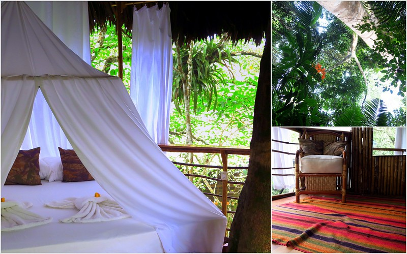 Inside our jungle treehouse