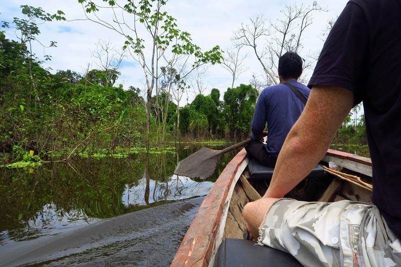 Doing on excursions in the Amazon Jungle.