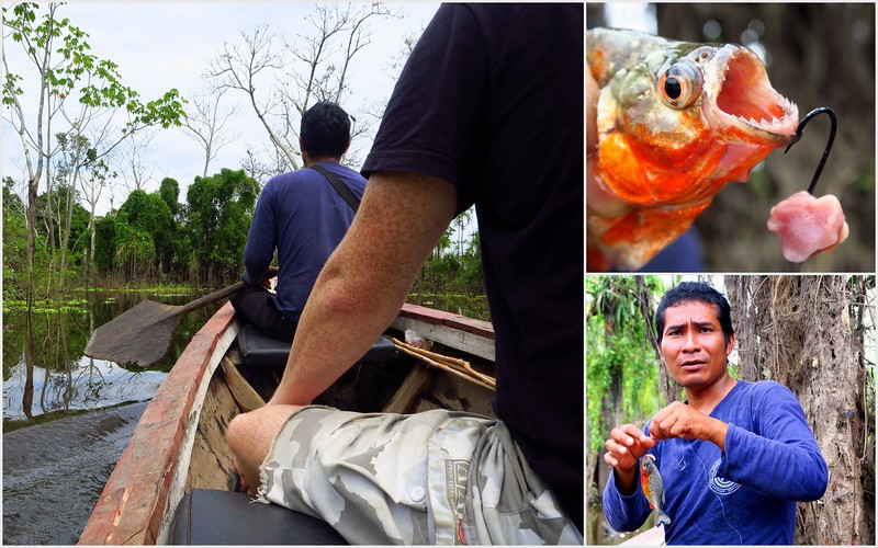 Fishing for piranhas