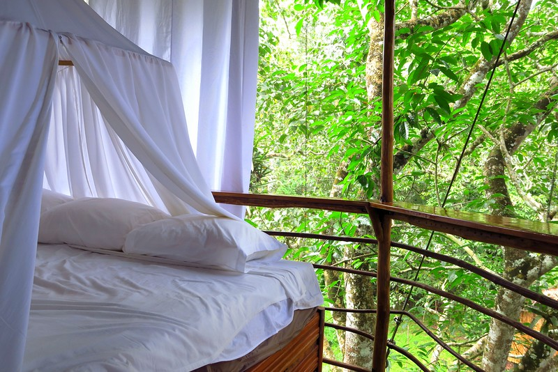 Canopy bed in our jungle treehouse