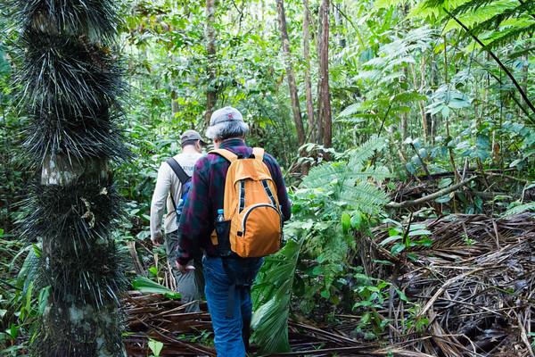 La Perla Jungle Hike