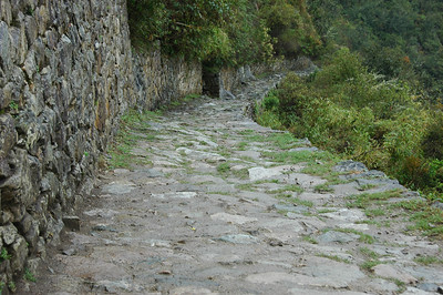Pathway leading to Machu Picchu (from above)