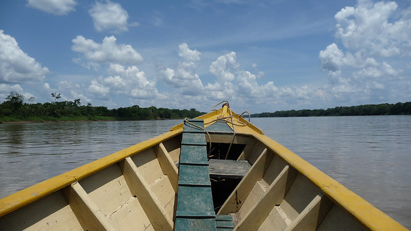 Day 14.  We fly to Puerto Moldonado in the Amazon forest in Southeastern Peru.  It is 55 km west of Bolivia, on the confluence of the Tambopata and Madre de Dios River, a tributary of the Amazon River. It is the capital of the Madre de Dios Region.   It is bloody hot.