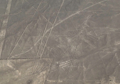The Condor, or Long-Tailed Mockingbird, measuring 135 x 68 meters.  Birds and fish wee the figures most frequently drawn, because of the relationship of sea and sky in the Nazca's religious beliefs.