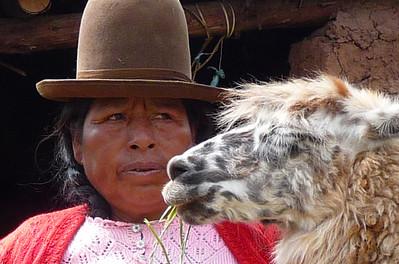Llama love.