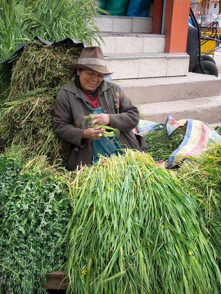 Another alfalfa vendor at a village in the Sacred Valley.