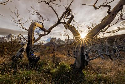 Torres Del Paines-2164