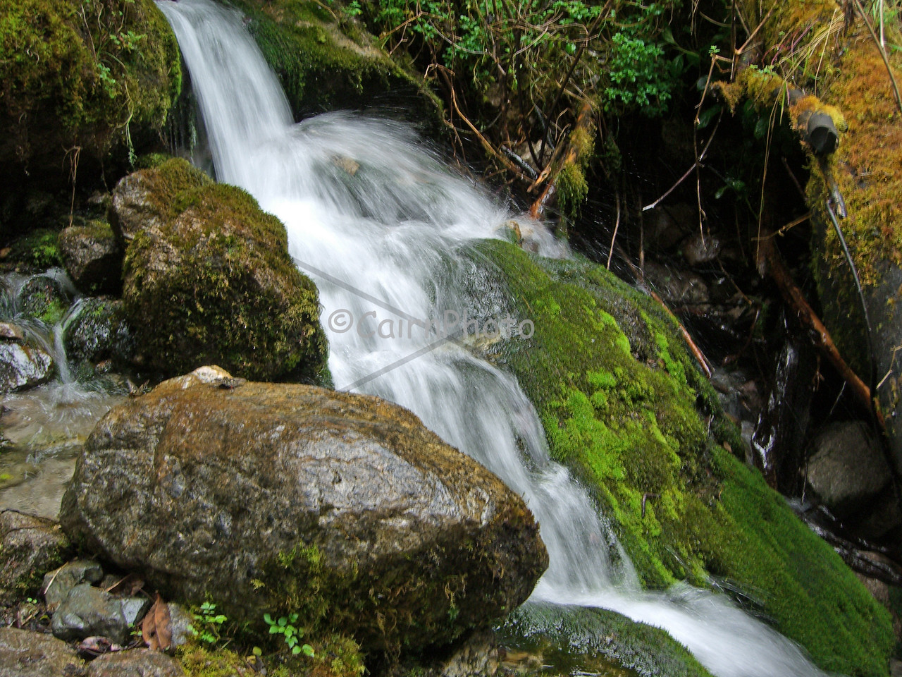 It rains a lot in Peru so creeks, streams and lush green plants were common.