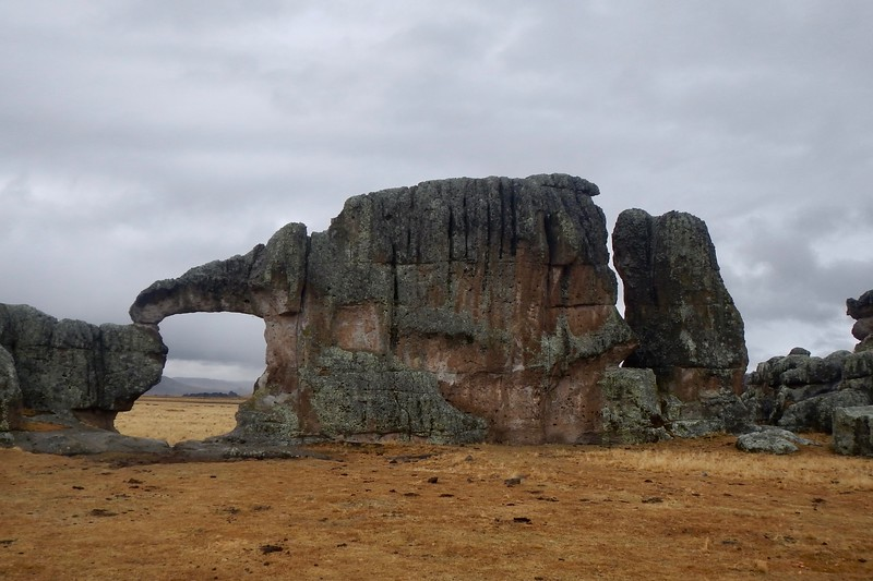 Bosque de Piedras, Pasco, Peru