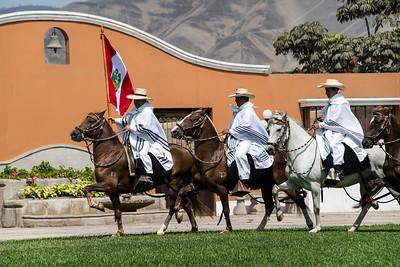 peru, pachacamac, lurid valley, peruvian paso horse