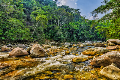 Huacamillo River, Amazon Rainforest, Peru