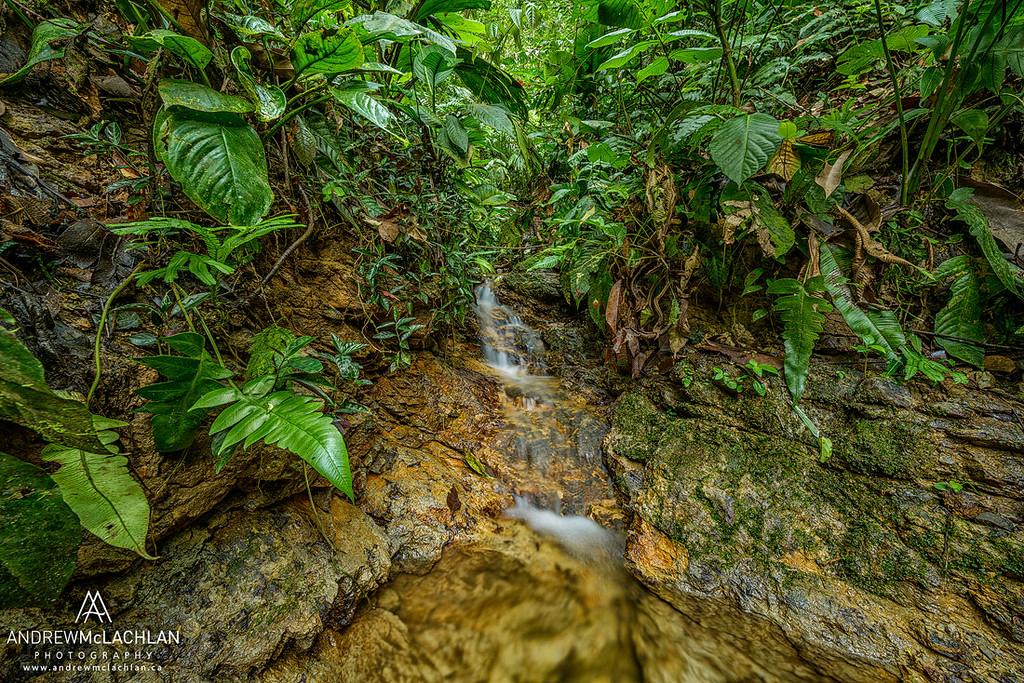 Small stream in the Cordillera Escalera, Peru