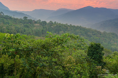 Sunrise in the foothills of the Andes Mountains, tarapoto, Peru