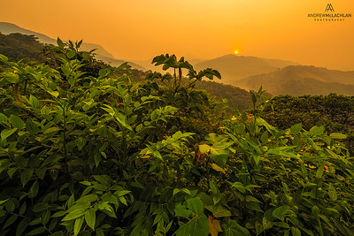 Sunrise over the Amazon Rainforest in the Cordillera Escalera near Tarapoto, Peru