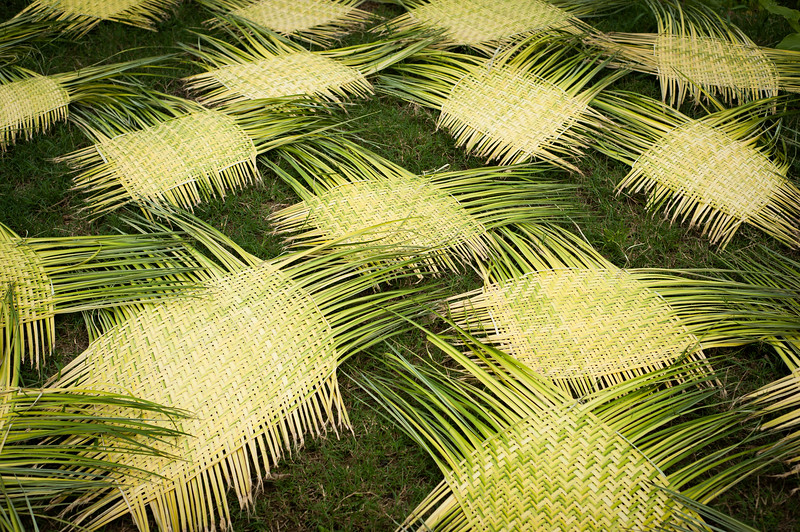 Grass matts drying out in the sun, Iquitos, Peru, South America