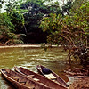 Three Dugout Canoes