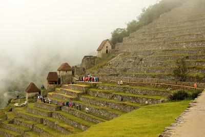 Terrace Gardens, Machu Picchu, Peru