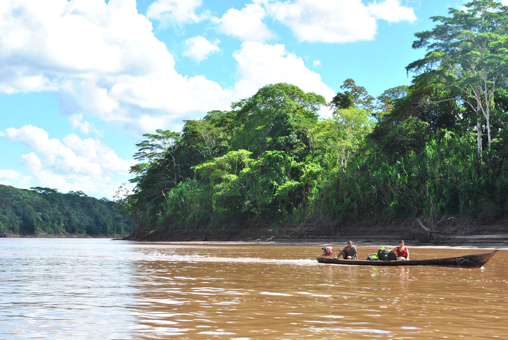 Amazon jungle of peru
