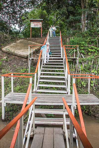 Stairs from dock at Ceiba Tops Lodge (photo by John Jones)