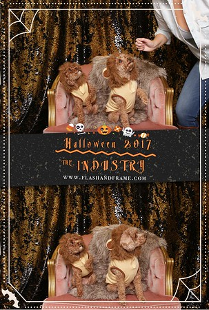 Pet Booth Halloween 2017
