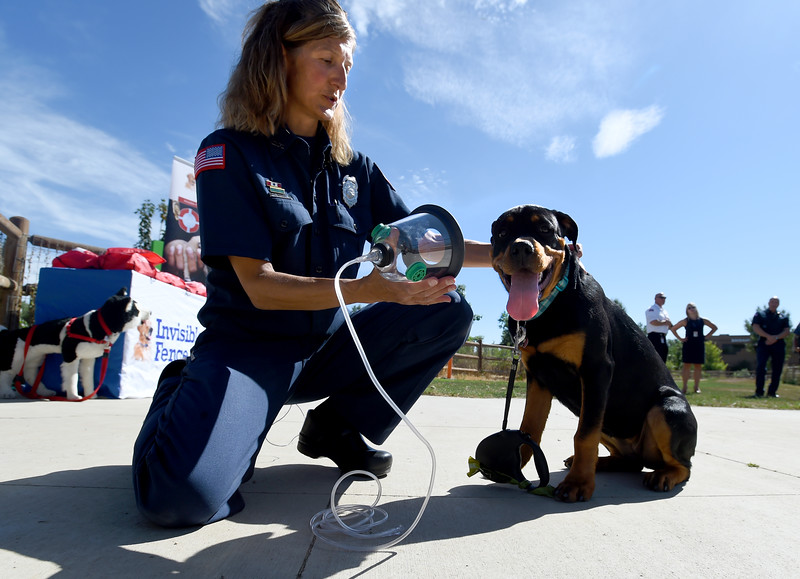 Pet Oxygen Masks